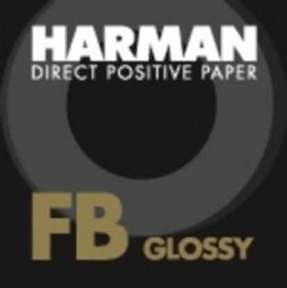Afbeelding van Ilford Harman Direct Positive Paper FB1K Fiber Based Glans, 27,9x35,6cm 10vel art.nr. 10203