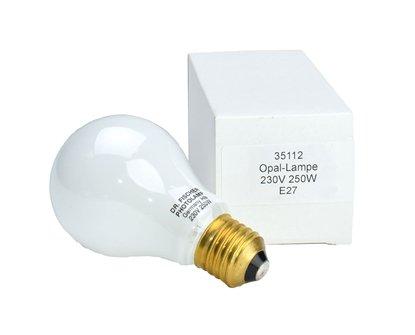 Afbeelding van Opaallamp 230V 250W voor vergroter  art.nr. 85993