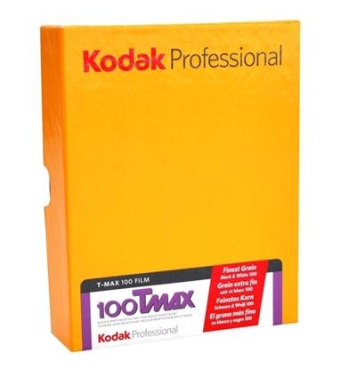 Kodak Vlakfilm T-Max 100 TMX 4x5 inch 10 vel