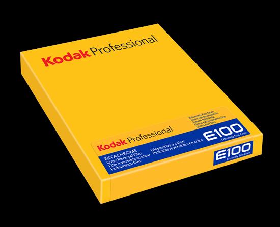Kodak Ektachrome E100 4x5 inch 10 vel