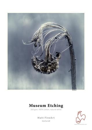 Afbeelding voor categorie Museum Etching