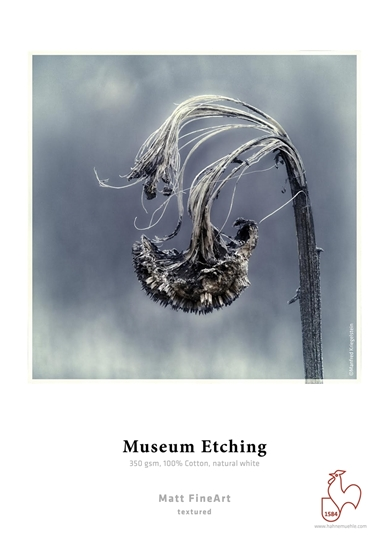 Hahnemuehle Museum Etching 350 gr. A3Plus 32,9x48,3cm 25 vel