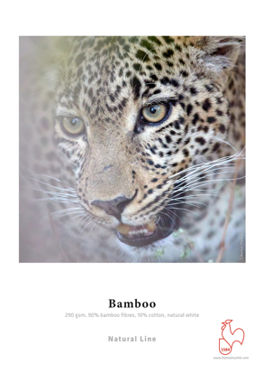 Hahnemuehle Bamboo 290 gr. 44inch (1118mm) x 12mtr
